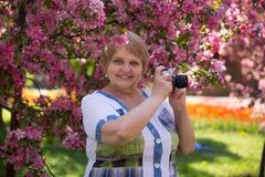 Happy adult woman photographer under pink flowering tree in garden Stock Images