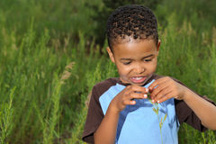 Happy African American Child. Playing in a meadow Stock Photography