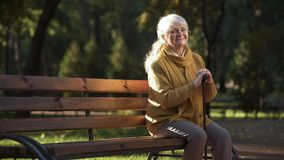 Happy aged woman enjoying warm sunny day sitting on bench in park, retirement royalty free stock images