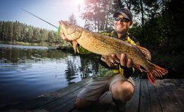 Happy angler with pike Royalty Free Stock Image