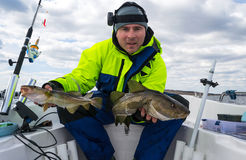 Happy angler with two Baltic cods. Cod fishing on Swedish side of the Baltic sea stock images