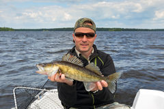 Happy angler with walleye trophy fish. Happy angler with nice walleye caught from boat royalty free stock image