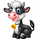 Happy animal baby cow in a sitting posing Royalty Free Stock Photos