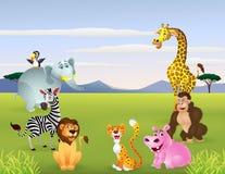 Happy animal cartoon Stock Photos