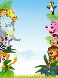 Happy animal cartoon Stock Image