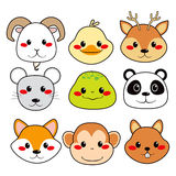 Happy Animal Faces. Collection of nine funny and cute happy animal faces smiling Royalty Free Stock Photo