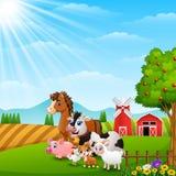 Happy animals at farm background on daylight Royalty Free Stock Image
