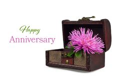 Happy Anniversary card with Aster flower in wooden chest royalty free stock photography