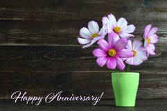 Happy Anniversary card with flowers in the vase. Happy Anniversary card with cosmos flowers in the vase Royalty Free Stock Image