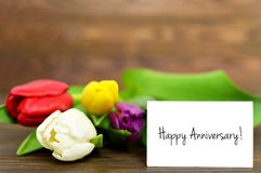 Happy Anniversary card and tulips. Wooden background Royalty Free Stock Images