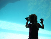 Happy Aquarium Girl. A little girl looks into a large aquarium with joy stock photography