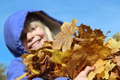 Happy Armful of Leaves Stock Photo