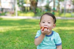 Happy Asian baby boy enjoy eating fried chicken in the green garden outdoor royalty free stock photography