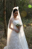 Happy Asian bride wearing bridal gown stnading in a pine forest Stock Photography