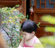 Happy Asian Chinese baby girl play in a garden Stock Images