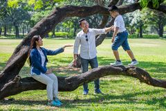 Happy asian Family, parents and their children in park together. father and  mother supporting  son walking on branch of big tree. Having fun and laughing stock photos