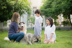 Happy Asian family playing with siberian husky dog. In the garden Royalty Free Stock Photos