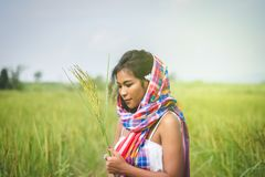 Happy Asian girl enjoy in green rice field, countryside of Thail Royalty Free Stock Images