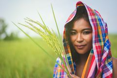 Happy Asian girl enjoy in green rice field, countryside of Thail Stock Photo