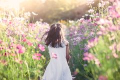 Happy asian little child girl running and having fun in garden. Happy asian little child girl running and having fun in the cosmos flower field in vintage color Royalty Free Stock Photo