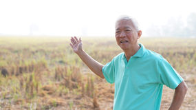 Happy Asian senior modern farmer smiling in front of harvested r Stock Image