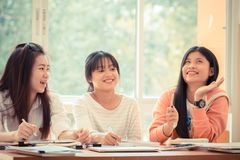 Happy Asian young woman doing group study. Asian University or c stock images