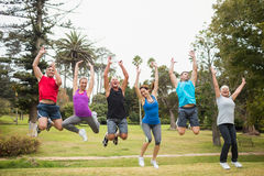 Happy athletic jumping together Royalty Free Stock Image