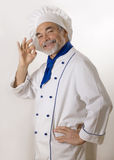 Happy attractive cook Stock Images
