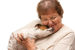 Happy Attractive Senior Woman with Puppy on White Stock Photo