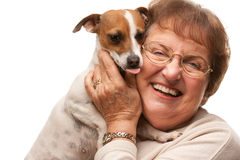 Happy Attractive Senior Woman with Puppy on White Royalty Free Stock Images