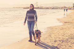 Happy attractive young woman with her german shepard dog walking on the beach at autumn sunset stock photos