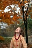 Happy autumn Royalty Free Stock Image