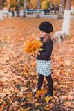 Happy autumn. A little girl in a red beret is playing with falling leaves and laughing. Girl in brown wool sweater and beret royalty free stock photography