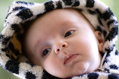 Happy baby. Image of a cute baby in hood Royalty Free Stock Image