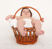 Happy baby in basket on white Stock Image