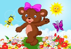 Happy baby bear cartoon Stock Image