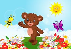 Happy baby bear cartoon Royalty Free Stock Image