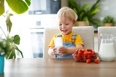 Happy baby boy eating strawberries with milk Royalty Free Stock Images
