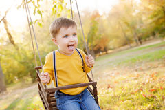 Happy baby boy having fun on a swing ride at a garden a autumn day Stock Photography