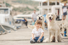 Happy baby boy with him dog on berth in summer Stock Photography