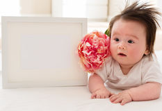 Happy baby boy with photo frame and flower Royalty Free Stock Photography