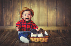 Happy baby boy playing with kittens Royalty Free Stock Image