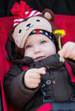 Happy baby boy in a stroller Stock Photography