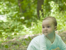 Happy baby crawling in the Park. Stock Photos