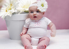Happy Baby and Daisies Stock Photography