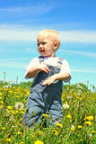Happy Baby in Dandelion Field Stock Image