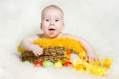 Happy baby in Easter basket with eggs. Easter holiday concept: nest with baby chick Stock Images