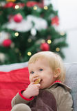Happy baby eating cookie near Christmas tree Stock Photography