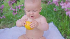 A happy baby eating an orange stock footage