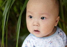 Happy baby face closeup Royalty Free Stock Photo